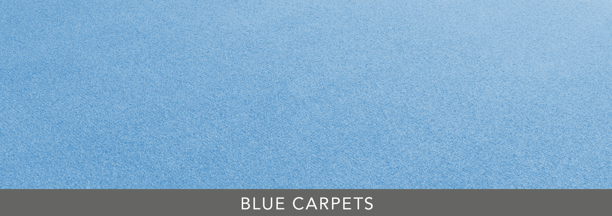 Group hero blue carpets