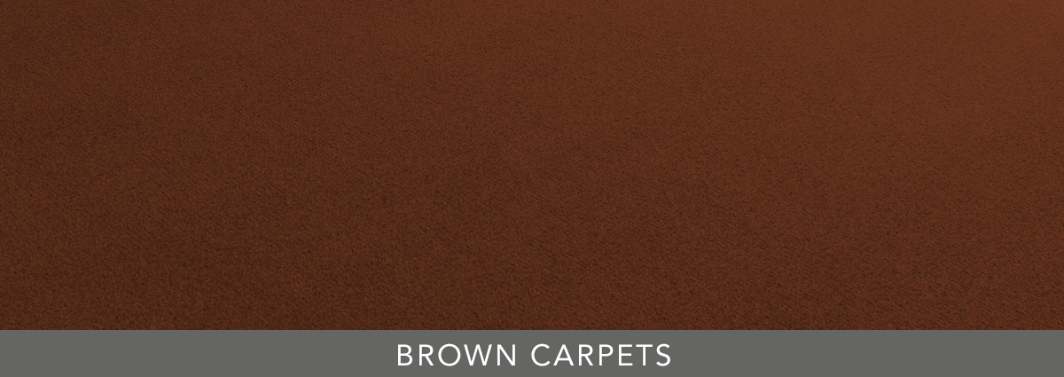 Group hero brown carpets