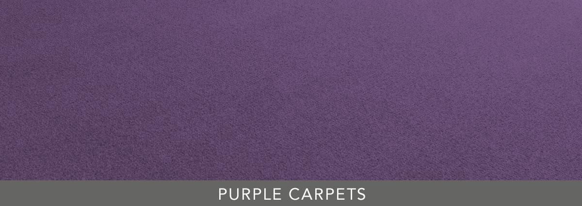 Group hero purple carpets